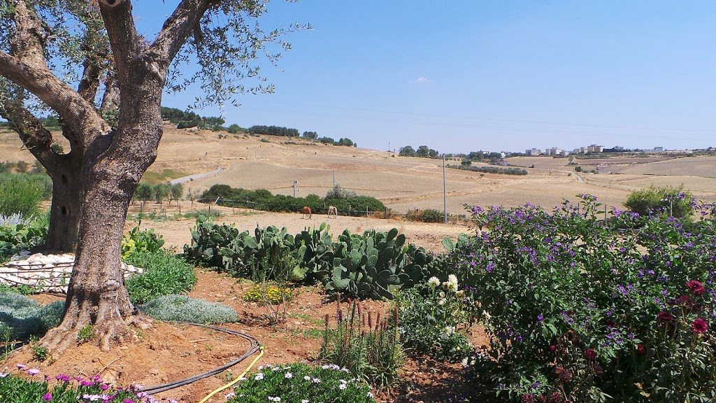 Eventi Foodie: Mercatino del gusto di Maglie e la Puglia