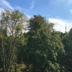 Pomeriggi milanesi pieni di sole in terrazza con le amichehellip
