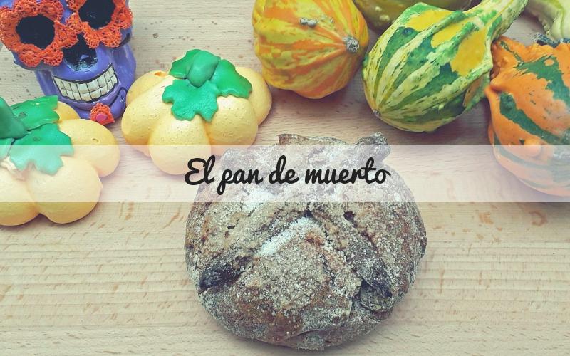 """Pan de muerto: tradizione gastronomica per festeggiare """"el dia de los muertos"""""""