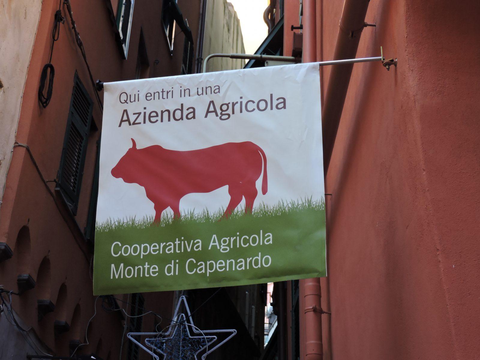 Cooperatica agricola_Spadelliamo