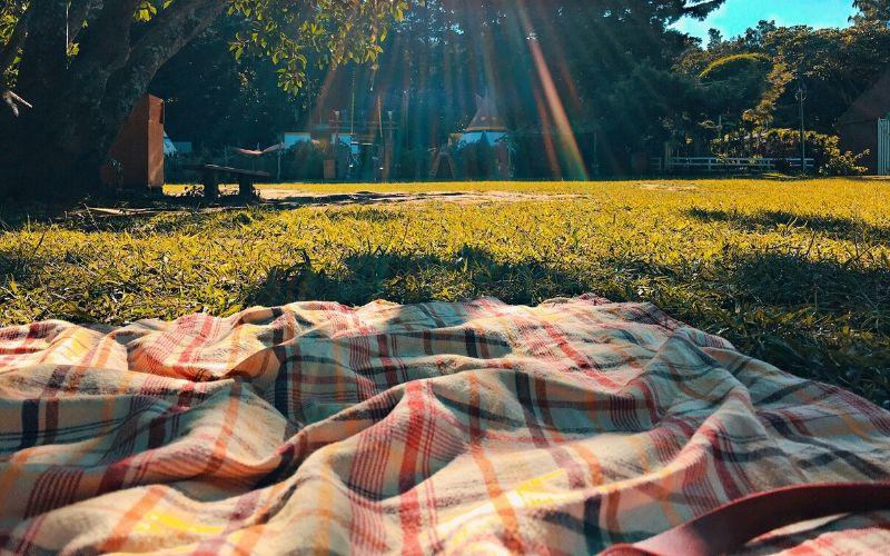picnic-al-parco_spadelliamo